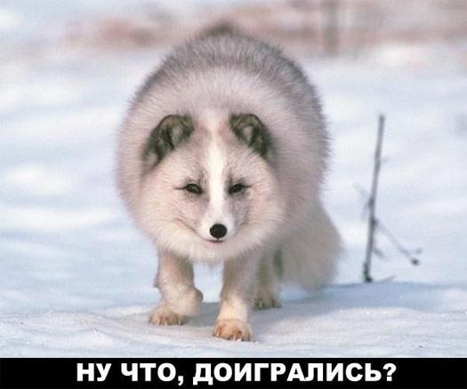 Ну что, доигрались??? =)))