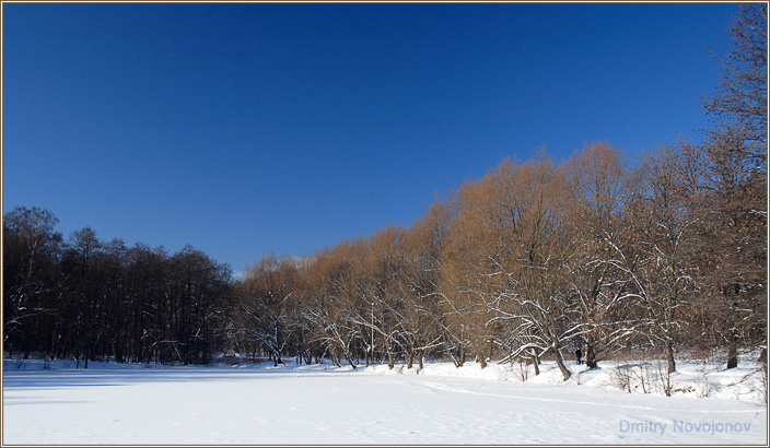 Глубокое Синее : Только зимой, в феврале, можно увидеть Глубокое Синее Небо. Это очень красиво. (Фотограф Дмитрий Новоженов)